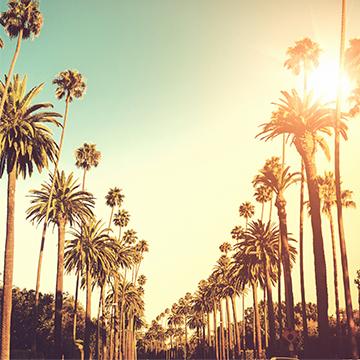 Visit L.A. after Summer Camp